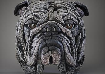 Bulldog - White